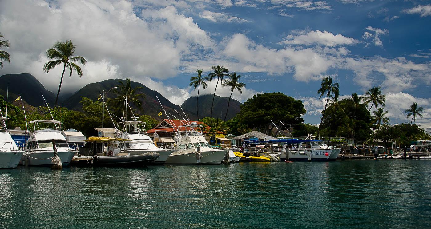 Lahaina Harbor Afternoon, Maui, HI | Pono Images