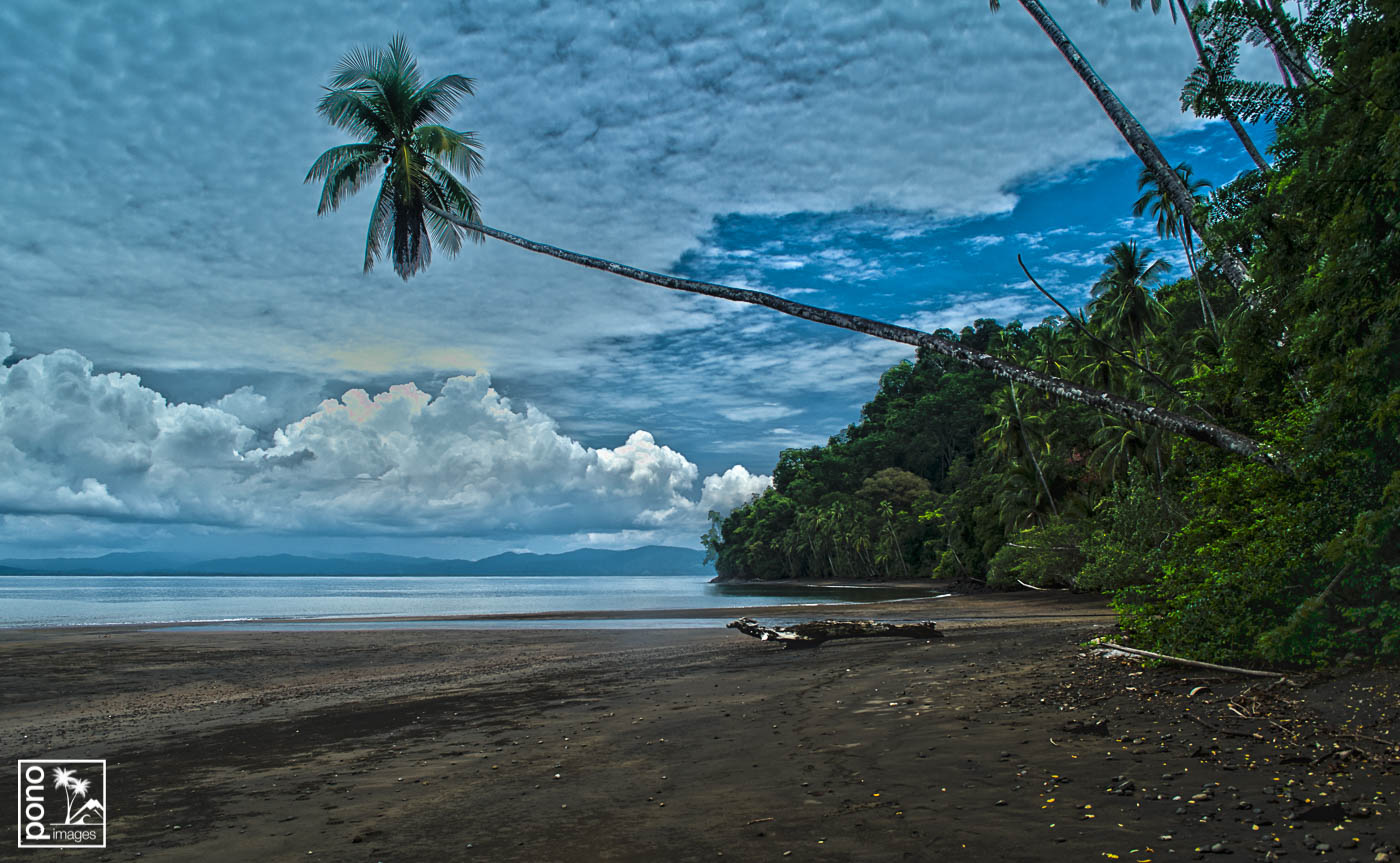 Goflo Dulce Morning, Costa Rica | Pono Images