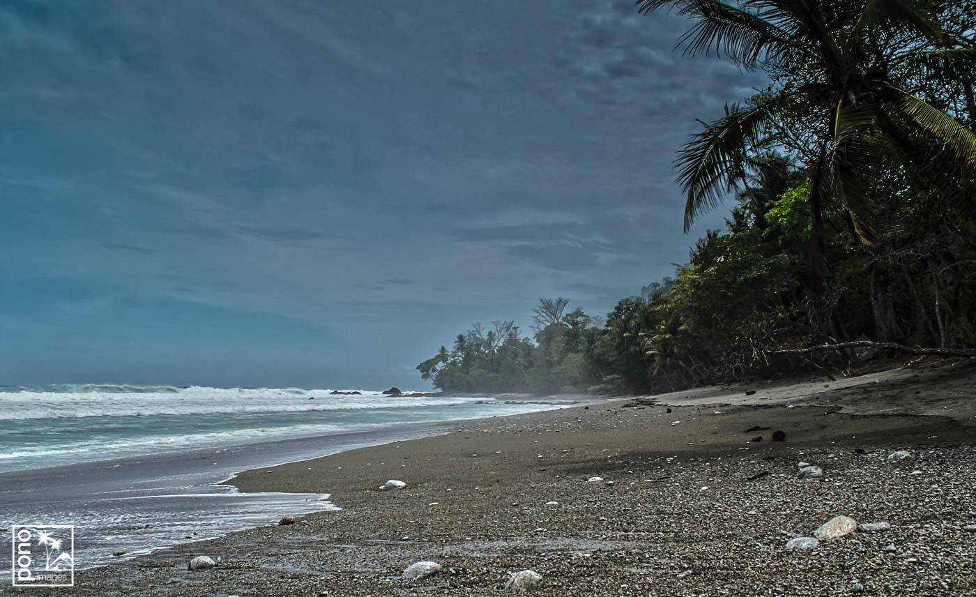 Matapalo Beach, Osa Peninsula, Costa Rica