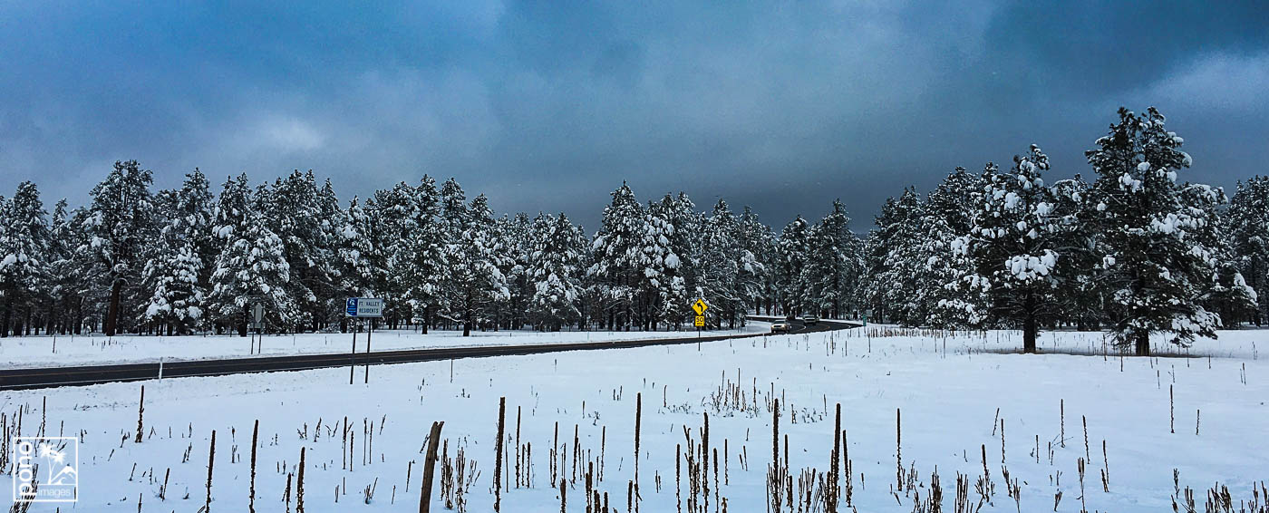 Flagstaff Snow Day by Pono Images