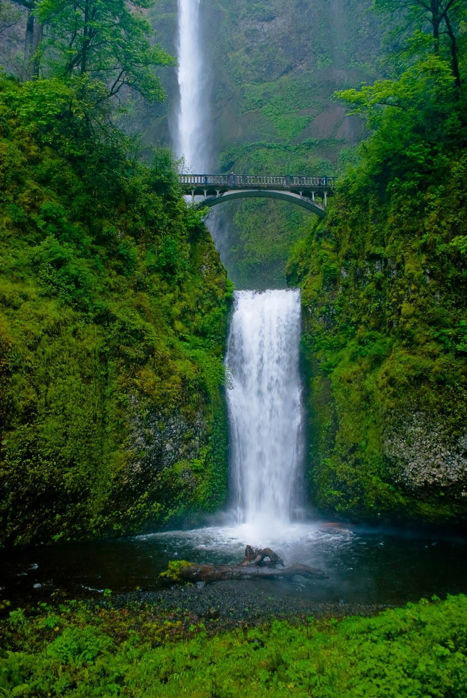 Multnomah Falls & Bridge, Oregon | Pono Images