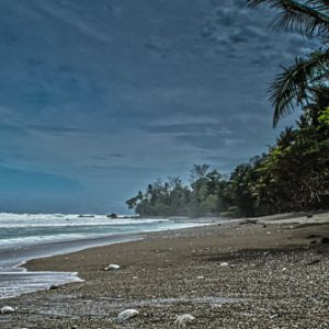 Matapalo Beach, Osa Peninsula, Costa Rica | by Pono Images