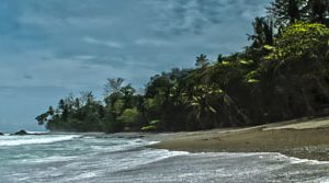 Morning Surf along Matapalo Beach, Costa Rica | by Pono Images