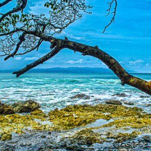 Playa Pan Dulce, Osa Peninsula, Costa Rica - Surf | by Pono Images
